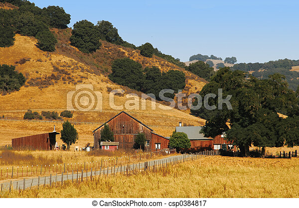 Sommerfarm - csp0384817