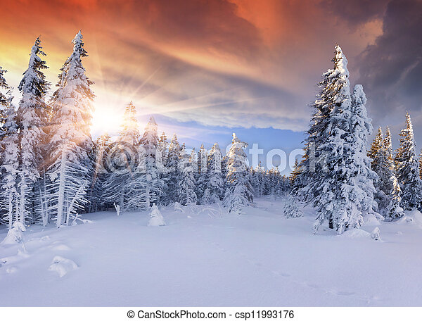 Wunderschöner Winter in den Bergen. Dramatischer roter Himmel - csp11993176