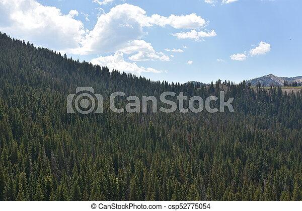 Cottonwood Canyon Drive in Utah. - csp52775054