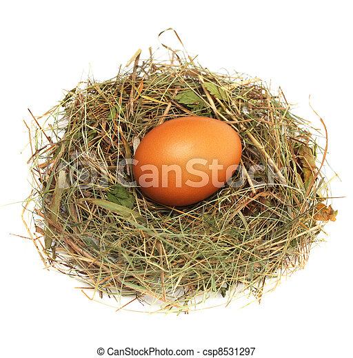 Ei in einem Nest - csp8531297