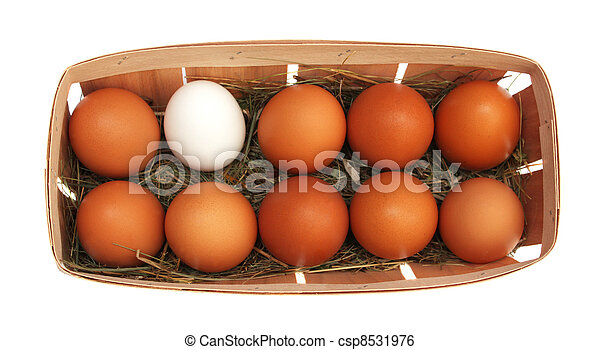 Eier in einem Korb. - csp8531976