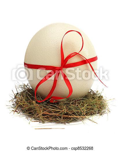 Eier in einem Nest. - csp8532268