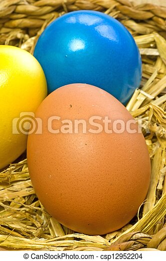 Eier in einem Nest. - csp12952204