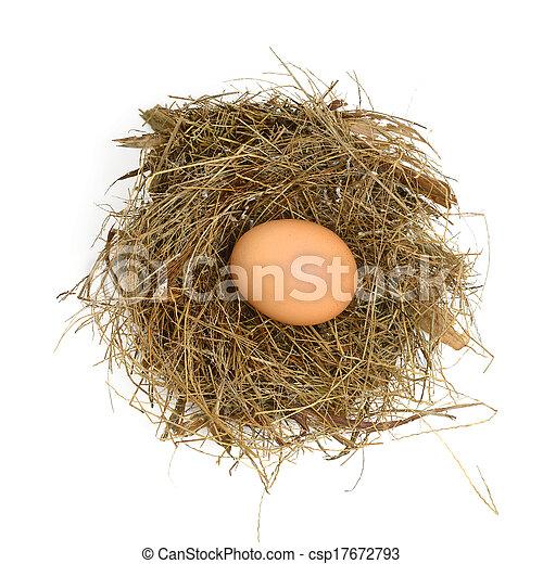 Eier in einem Nest. - csp17672793