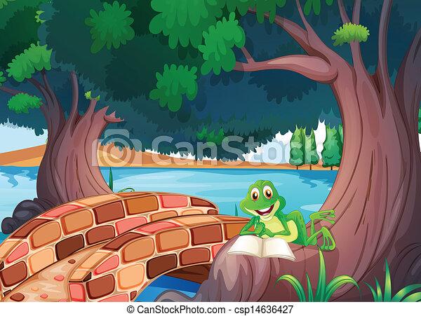 Ein Frosch, der unter dem Baum neben einer Brücke liest - csp14636427