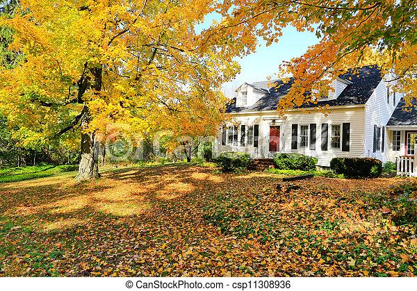 england, klassisch, haus, amerikanische , fall., außen, neu , während - csp11308936