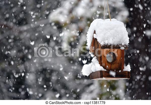 haus, winter, vogel - csp11381779