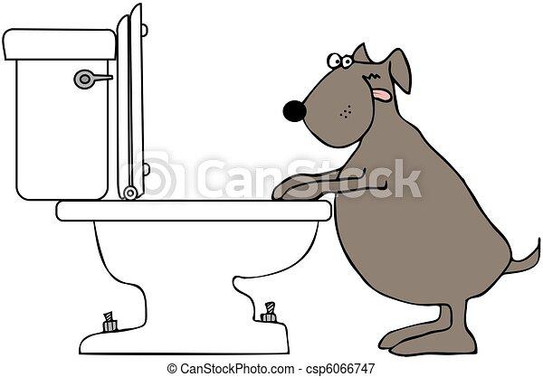 Hund trinkt aus der Toilette - csp6066747