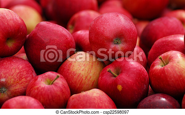 Roter, köstlicher Apfel. - csp22598097