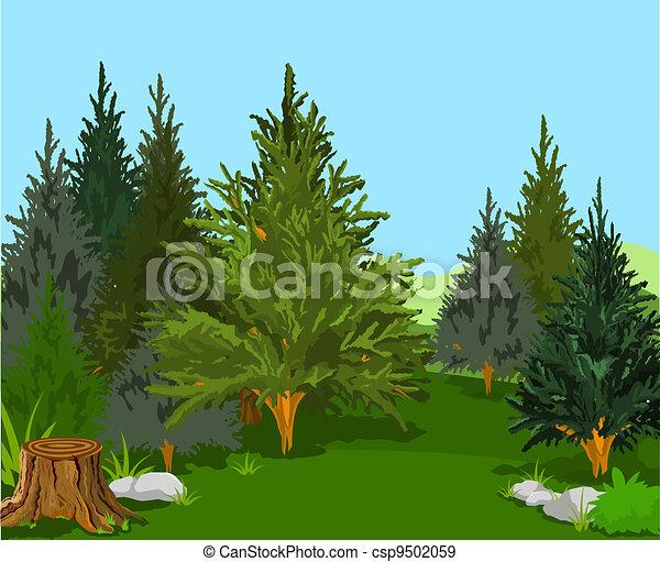 Waldlandschaft - csp9502059