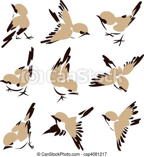 wenig, vogel, abbildung - csp4081217