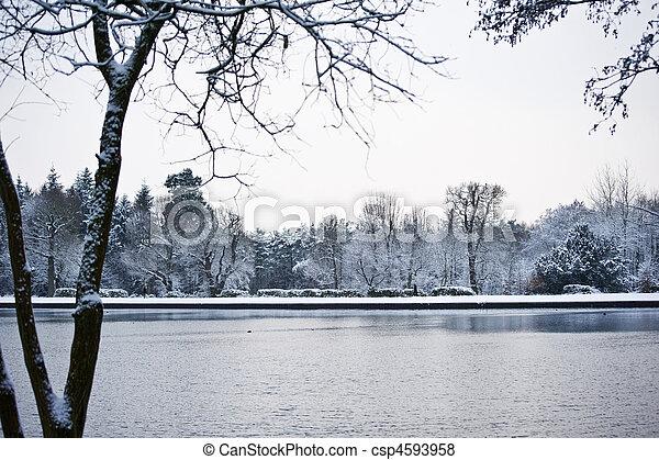 winterlandschaft, see - csp4593958